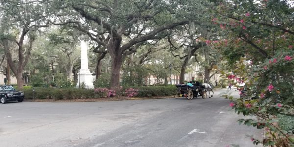 SavannahTraffic